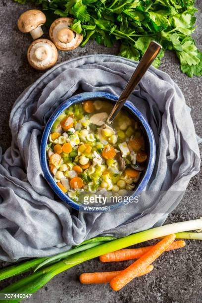 chicken soup with leek, carrots, noodles, spring onions, champignons and parsley - chicken soup stock photos and pictures