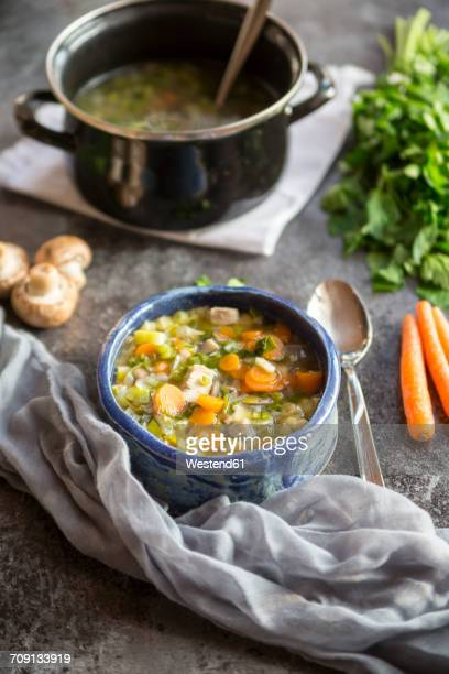 Chicken soup with leek, carrots, noodles, spring onions, champignons and parsley