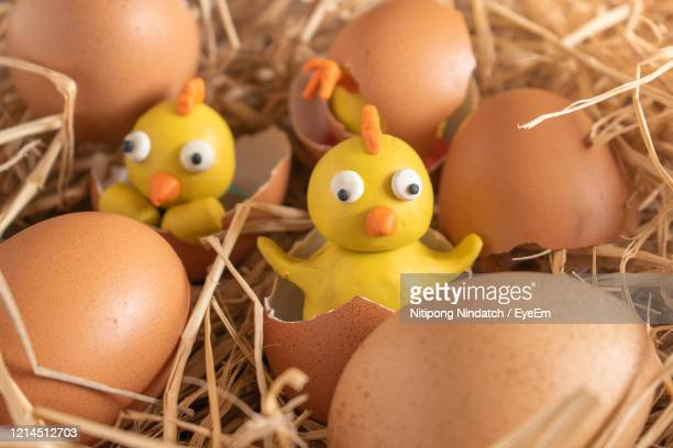 chicks in a straw from plasticine.chicken egg and plasticine chicken toys. - brown cartoon characters stock pictures, royalty-free photos & images