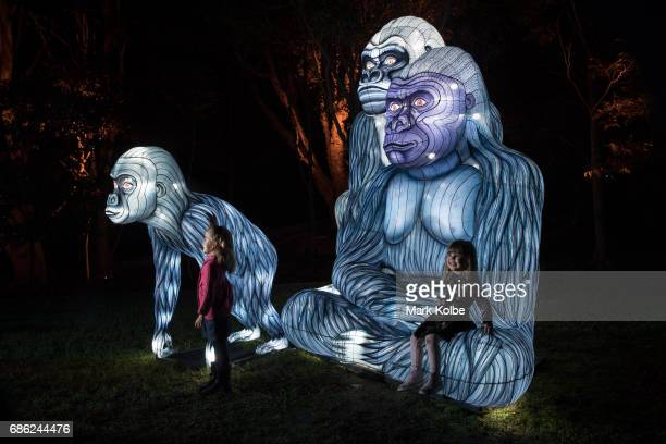 Chidlren pose in the Gorillagram installation one of the giant illuminated animal sculptures on display at Taronga Zoo is seen during a media call...