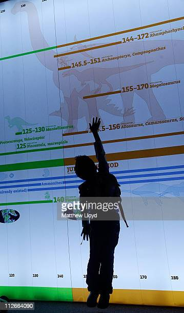 Chidren play in front of a timeline of evolution at the Natural History Museum on April 20 2011 in London England The Age of the Dinosaur is a summer...