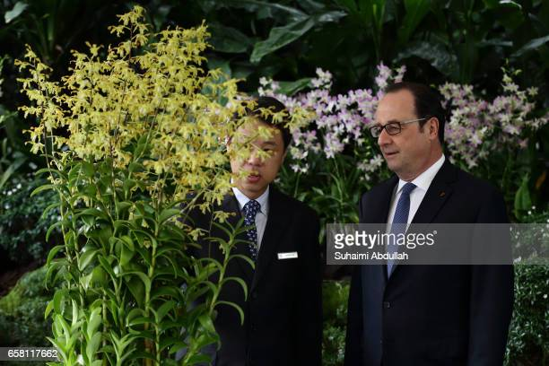 Chief Executive Officer of National Parks Board Kenneth Er and French President Francois Hollande look at the orchid 'Dendrobium Francois Hollande'...