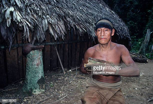 Chief Lopez with Barbasco vines used for stunning fish Lower Andean Amazon Basin Peru 1986 First contact of new band of remote Machiguenga Indians...
