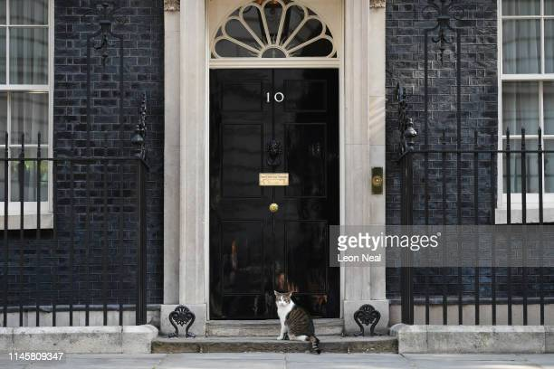 Chief mouser Larry the cat sits on the step of number 10 Downing Street on May 24 2019 in London England The prime minister will meet Sir Graham...