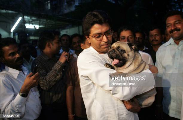MNS chief Raj Thackeray plays with his dog while taking a walk outside his residence Krishna Kunj at Shivaji Park minutes before a meeting with the...