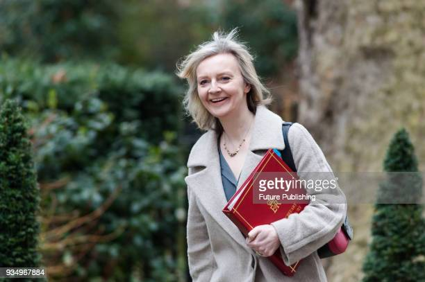 Chief Secretary to the Treasury Elizabeth Truss arrives for a weekly cabinet meeting at 10 Downing Street in central London March 20 2018 in London...