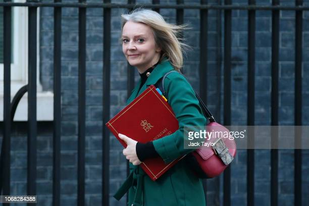 Chief Secretary to the Treasury Liz Truss arrives at 10 Downing Street as Ministers attend a weekly cabinet meeting ahead of a meaningful vote debate...