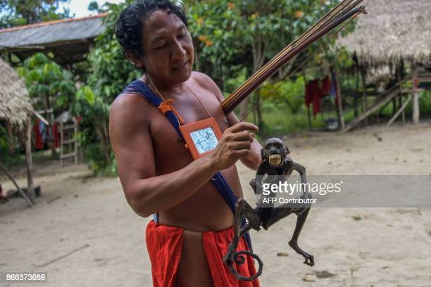 Chieftain Japarupi Waiapi shows a roasted monkey part of Waiapi's diet also based in Manioc and fruits at the reserve in Amapa state in Brazil on...