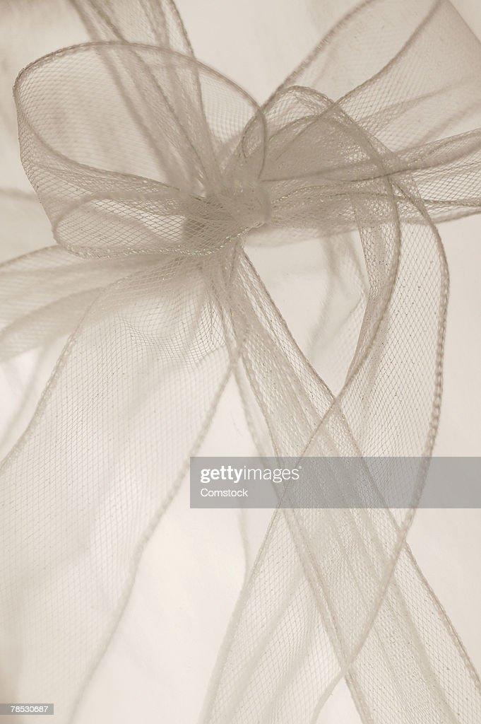 Chiffon ribbon and bow : Stock Photo