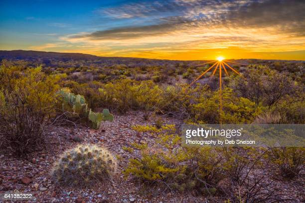 chihuahuan desert sunrise big bend national park - chisos mountains stock pictures, royalty-free photos & images