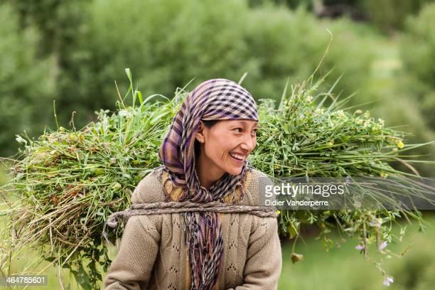 Chiktan Valley, Ladakh 2012, farm girl, farmer, crop, scarf, carry, smile
