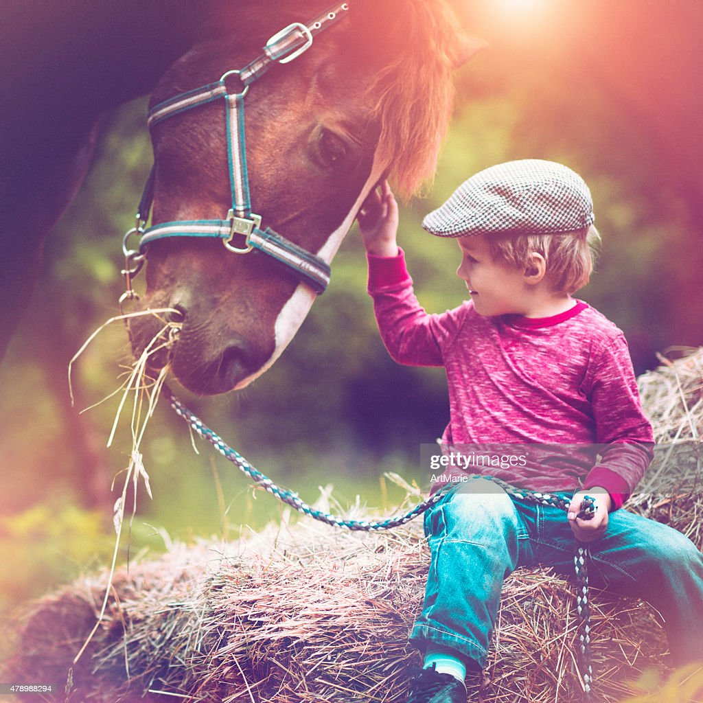Child and a horse : Stock Photo