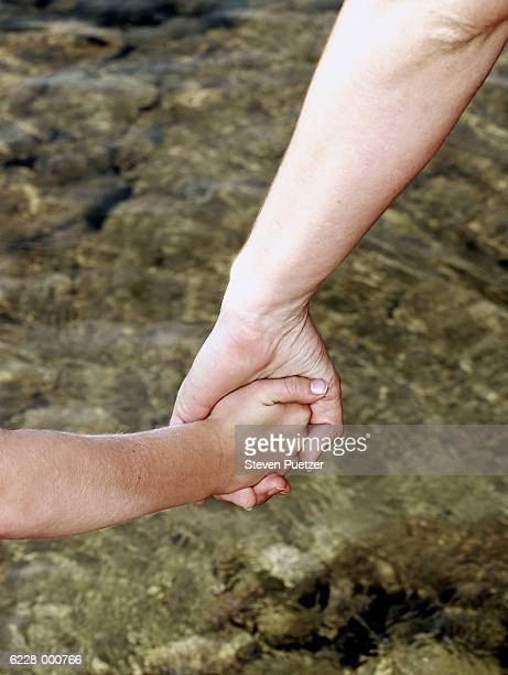 child and adult holding hands - beschützer stock-fotos und bilder