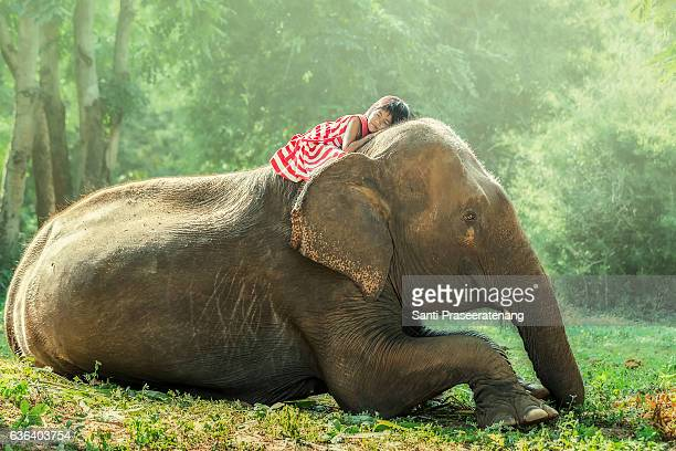 child and baby elephant - very young thai girls stock photos and pictures