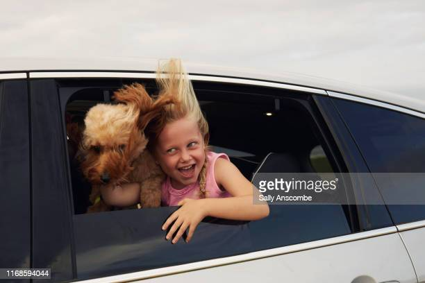 child and her dog - southport england stock pictures, royalty-free photos & images