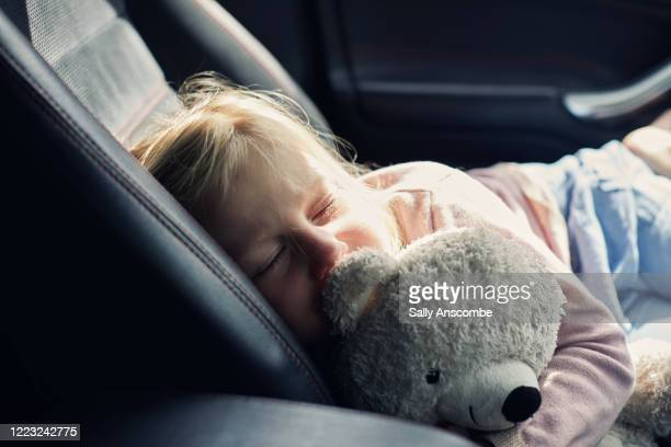 child asleep in the car - teddy bear stock pictures, royalty-free photos & images