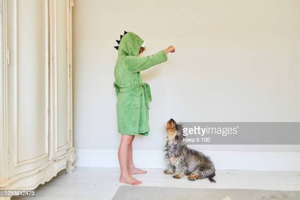 child at home with his pet dog - 訓練犬 ストックフォトと画像