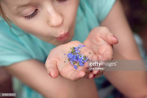 Child blowing small blue flowers from hands