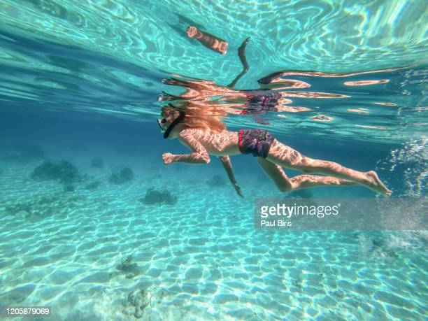 child boy snorkeling on the in open sea in the transparent waters of bay of pigs, playa larga, cuba - base equipamento desportivo imagens e fotografias de stock