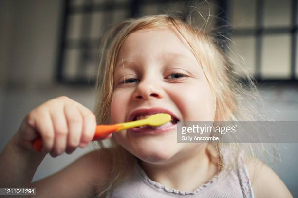 child brushing her teeth - sally anscombe stock pictures, royalty-free photos & images