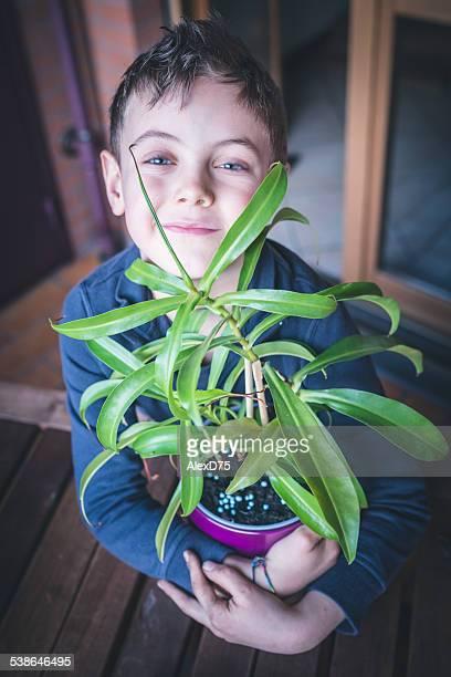 Child Caring Plant