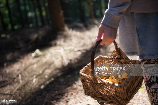 child carrying a basket of wild mushrooms foraged in a forest - foerageren stockfoto's en -beelden