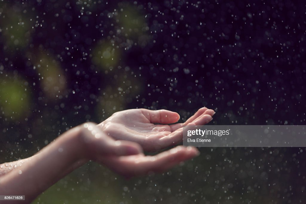 Child catching falling raindrops in hands : Stock Photo