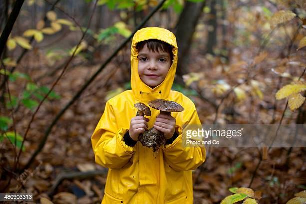 Child collecting mushrooms