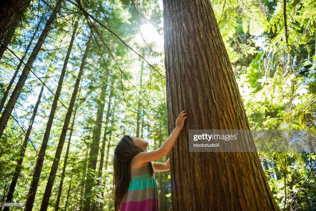 Child connecting with nature : Stock Photo