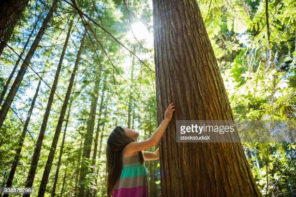 child connecting with nature - sensory perception stock pictures, royalty-free photos & images