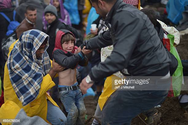 A child cries as he is pulled up while migrants wait in the field near the crossing border between Serbia and Croatia on October 20 2015 near the...