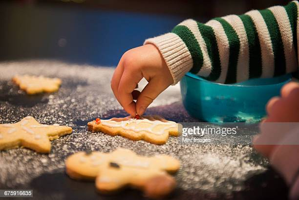 A child decorated Christmas biscuits.