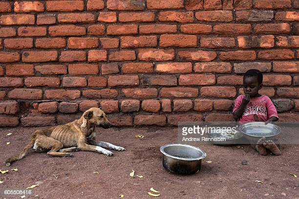 A child eats while a emaciated dog watches in the village of Jekete which lies in one of the areas most affected by drought on September 9 2016 in...