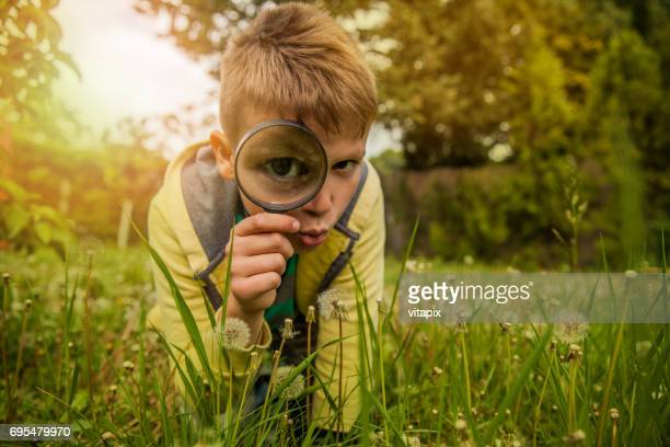 child exploring the outdoors with magnifying glass - curiosity stock pictures, royalty-free photos & images