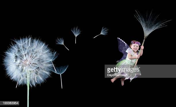 Child Fairy Floating on Dandelion Seed with Black Background