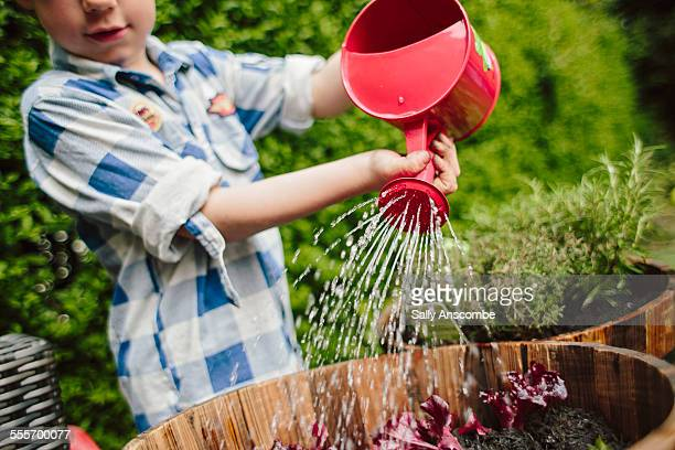 child gardening - watering stock pictures, royalty-free photos & images