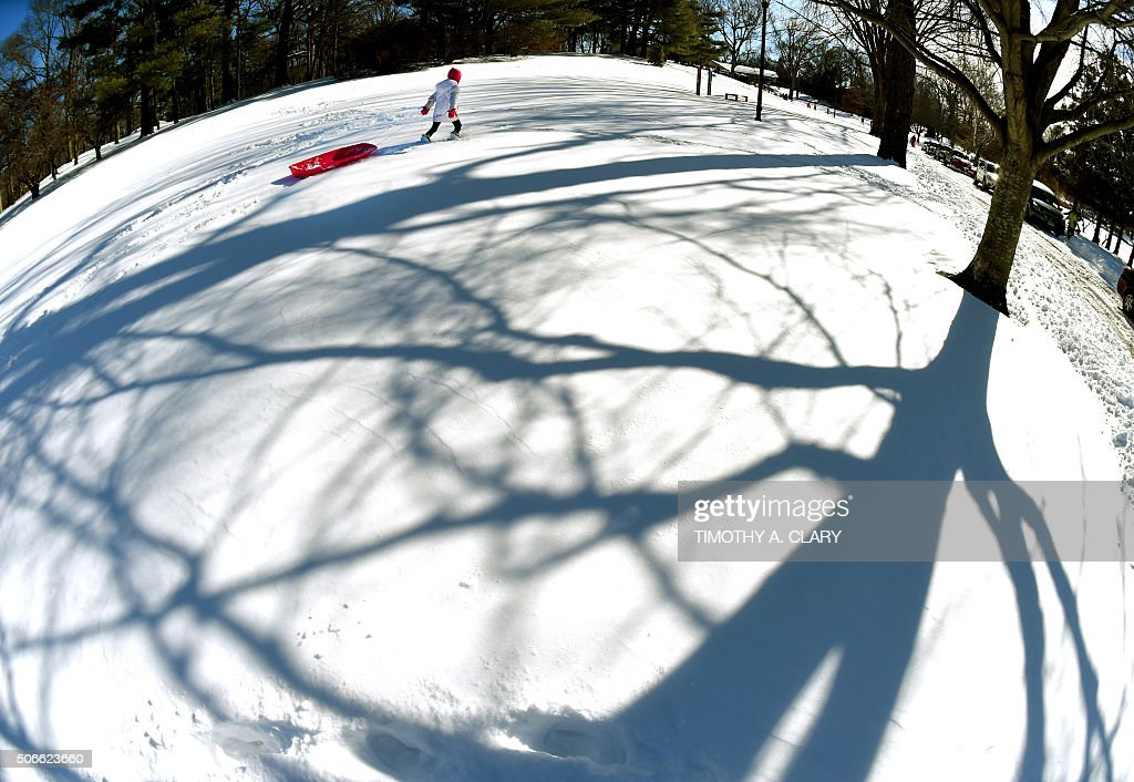 TOPSHOT - A child goes sledding down a hill in Bruce Park in Greenwich,Connecticut January 24, 2016 the morning a historic snowstorm that dumped 2 feet or more on some major cities. Millions of people in the eastern United States started digging out Sunday from a huge blizzard that brought New York and Washington to a standstill, but the travel woes were far from over. The storm -- dubbed 'Snowzilla' -- killed at least 18 people after it walloped several states over 36 hours on Friday and Saturday, affecting an estimated 85 million residents who were told to stay off the roads and hunker down in doors for their own safety. / AFP / Timothy A. CLARY