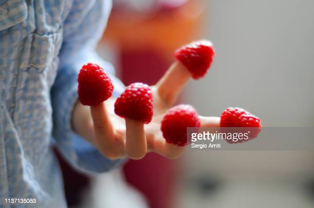 Child hand with raspberries on fingers