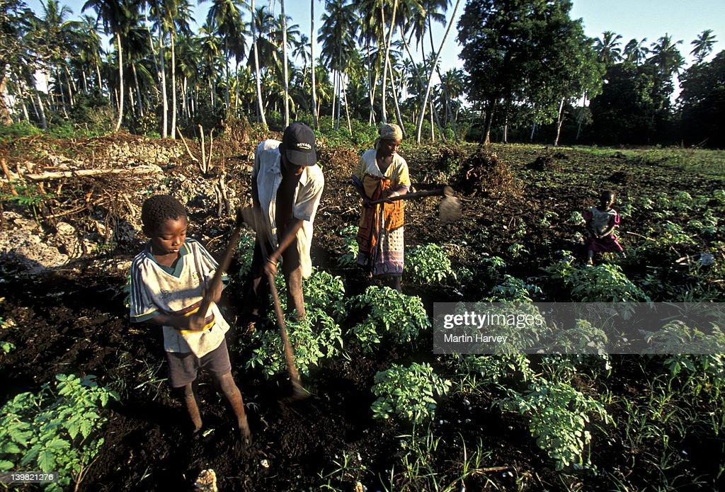 farming system characteristics vsa environmental systems