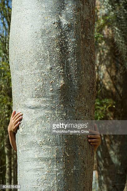 Child hiding behind tree trunk