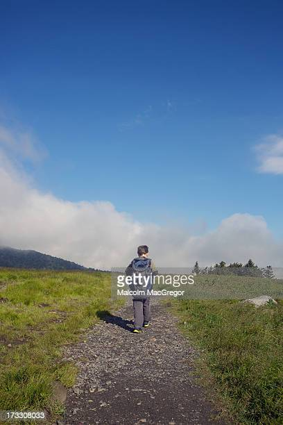 child hiking the appalachian trail - appalachian trail stock pictures, royalty-free photos & images