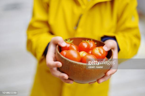 Child holding a bowl of cherry tomatoes