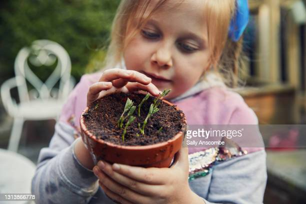 child holding a plant pot with seedlings growing - plant part stock pictures, royalty-free photos & images