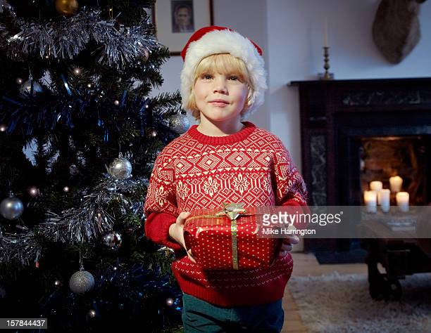 Child holding Christmas present beside tree.