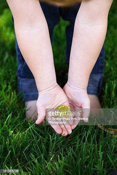 Child holding plastic toy frog