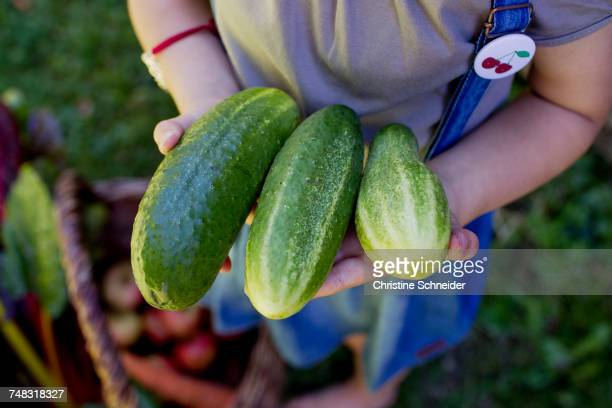 Child holding some cucumbers