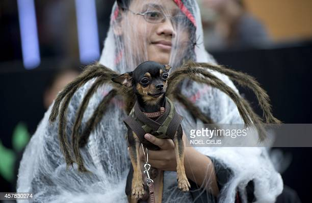 A child holds a dog dressed in a spider costume during the Cats and Dogs Halloween costume competition in Manila on October 25 2014 The annual...