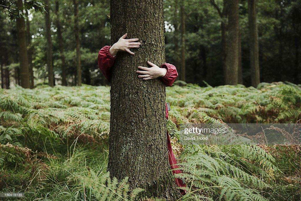 Child hugging tree. : Foto stock