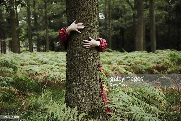 child hugging tree. - embracing stock pictures, royalty-free photos & images