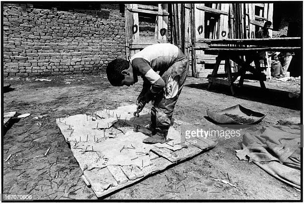 Child labor Tannery worker in Cairo in Egypt